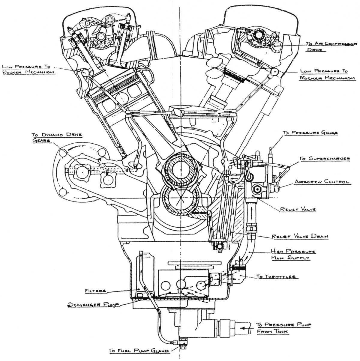 Ramp head merlin transverse section of the engine showing the lubrication system layout also provieds good detail of the valve gear and cylinder head malvernweather Choice Image